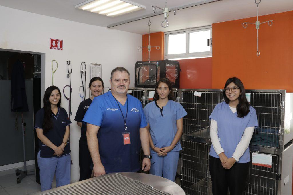 """""""Una gran satisfacción es la de poder enseñar mis conocimientos y experiencias a futuros médicos veterinarios"""". Fotos: Guillermo Pérez"""