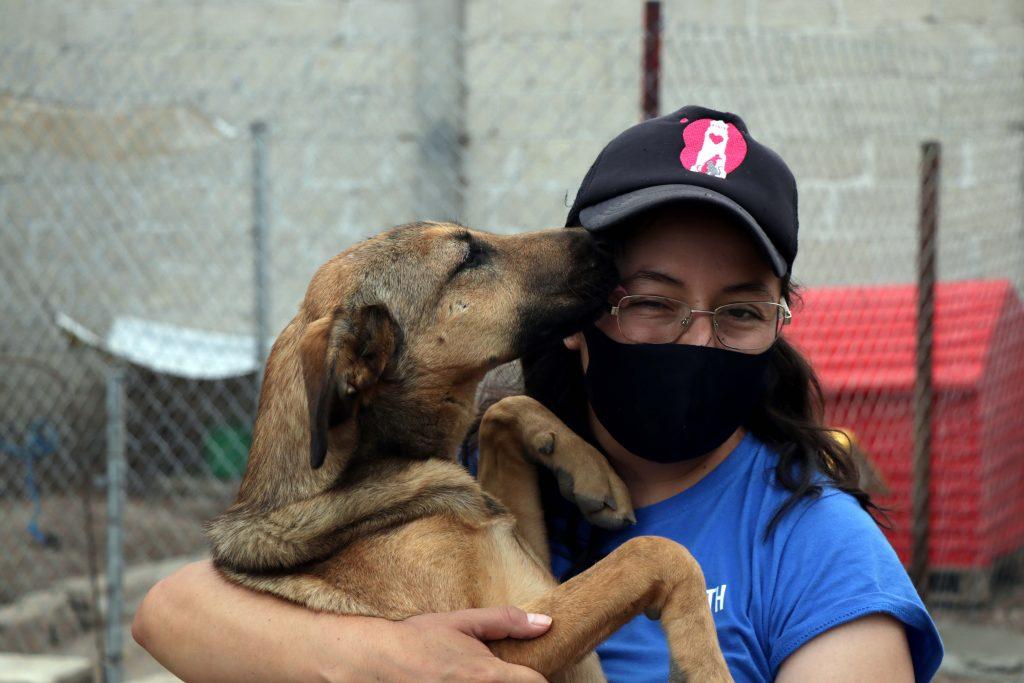 En nuestro refugio se puede ayudar de diferentes formas, desde venir a jugar con los perritos, ayudar a hacer el aseo, hasta donaciones en especie o efectivo. Fotografía: Damián Vera
